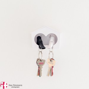 Love birds spare keys